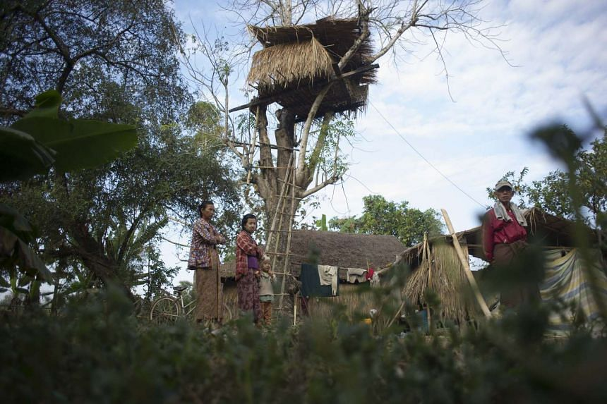 People standing near a tree house in the Kyauk Ye village on the outskirts of Yangon. Wild elephants are driving fearful villagers to seek refuge in tree houses.