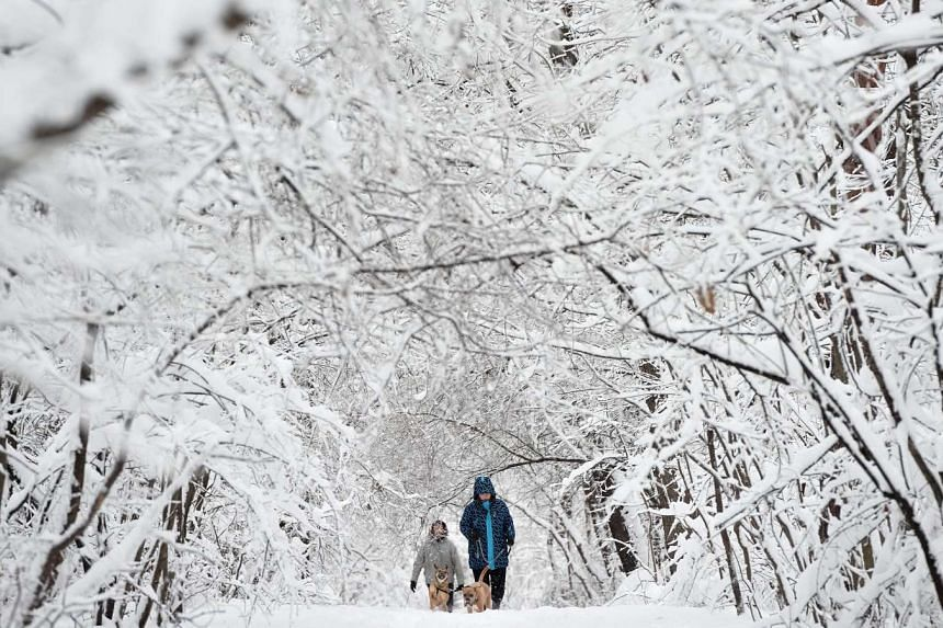 People walk with dogs through a park during snowfall in Sofia, Bulgaria on Jan 17, 2016.