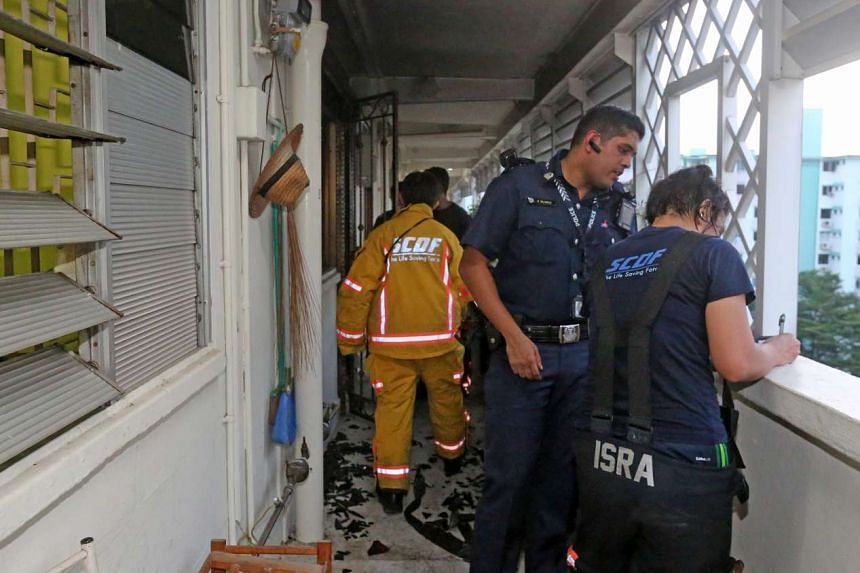A fire broke out in a flat in Queenstown on Saturday, Jan 16, 2016, after the owner reportedly left the fan on to keep his dogs cool.