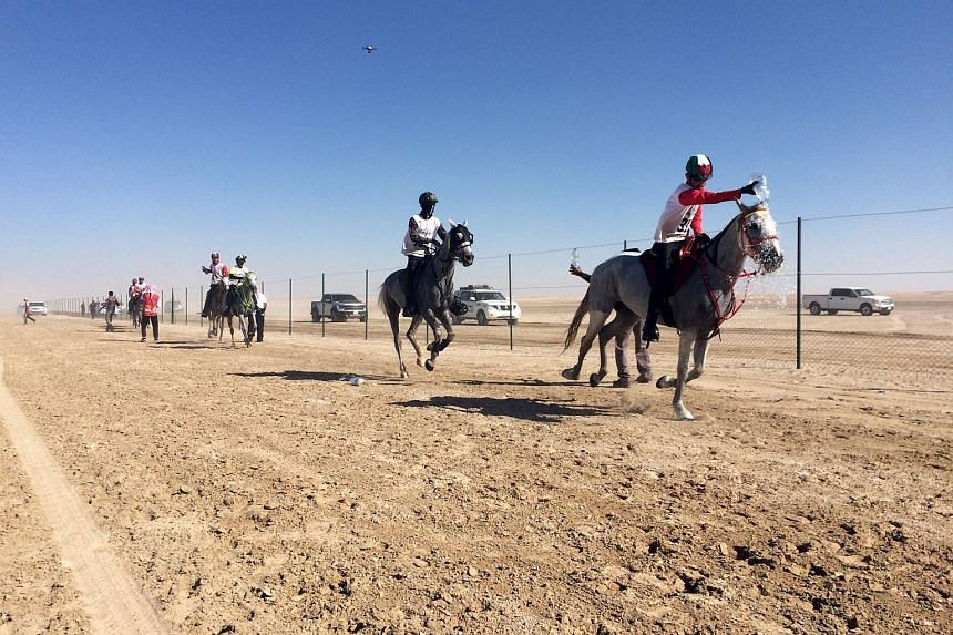 Participants of the 2016 HH Sheikh Mohammed Rashid Al Maktoum Endurance Cup racing in Dubai.