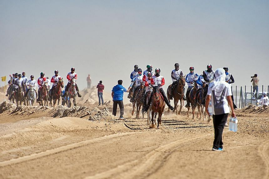 The health of the horses is paramount. Volunteers line the dusty circuit with water bottles to hand to the riders, who mostly pass on a sip but empty the contents onto their mounts to keep them hydrated.