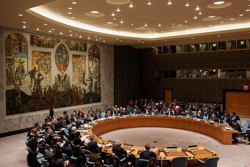 United Nations Security Council.