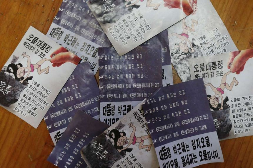Propaganda leaflets condemning South Korean President Park Geun-Hye found in a city near the Demilitarised zone dividing the two Koreas.