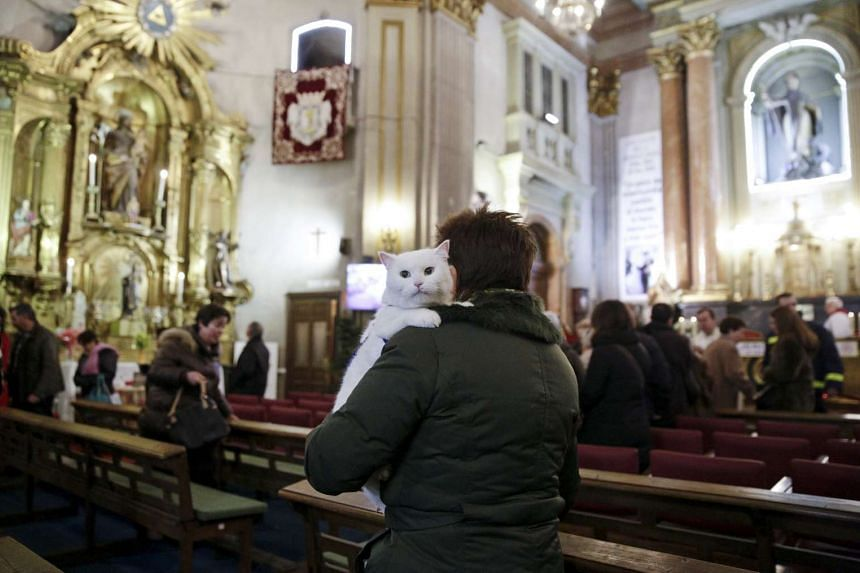 A woman carries her cat after a mass inside San Anton Church in Madrid on Sunday, Jan 17.