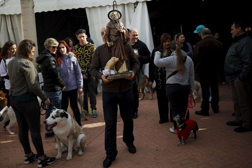 A man carries a statue of San Anton after pets were blessed by a priest in Benalmadena, near Malaga, Spain, on Sunday, Jan 17.