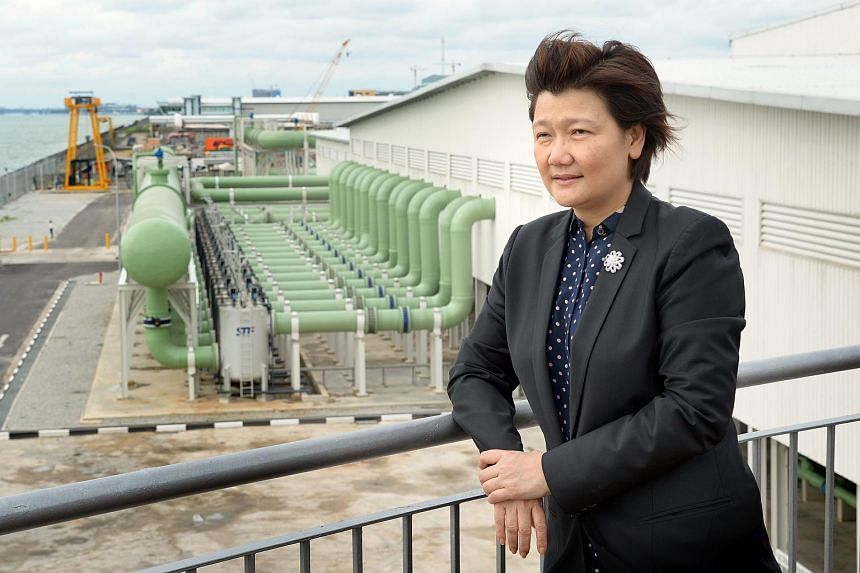 Ms Olivia Lum, founder of Hyflux at Hyflux's Tuaspring Desalination Plant on Sept 10, 2013.