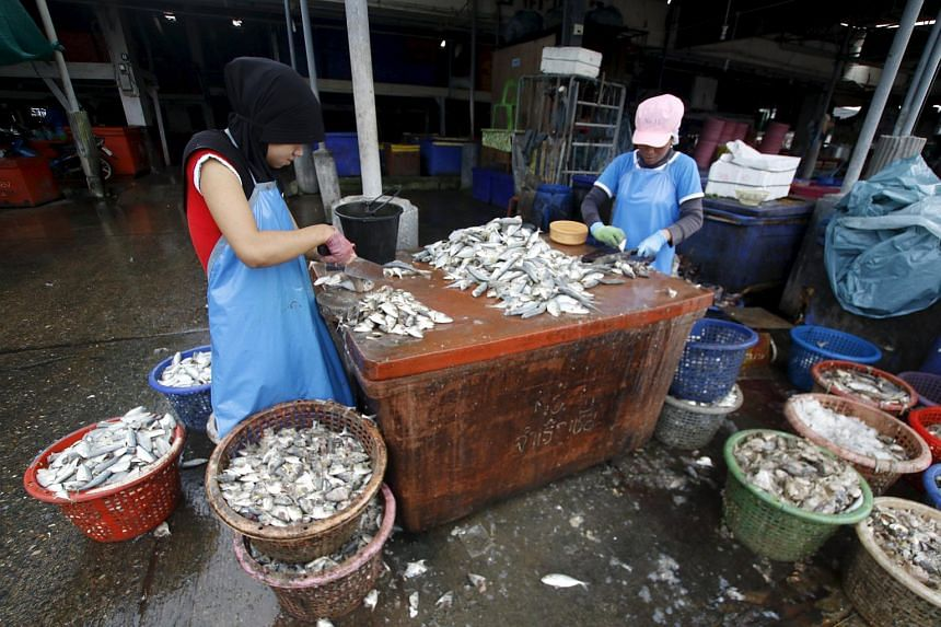 Migrant workers cutting fish during a police inspection at the pier of Songkhla, south Thailand on Dec 23, 2015.
