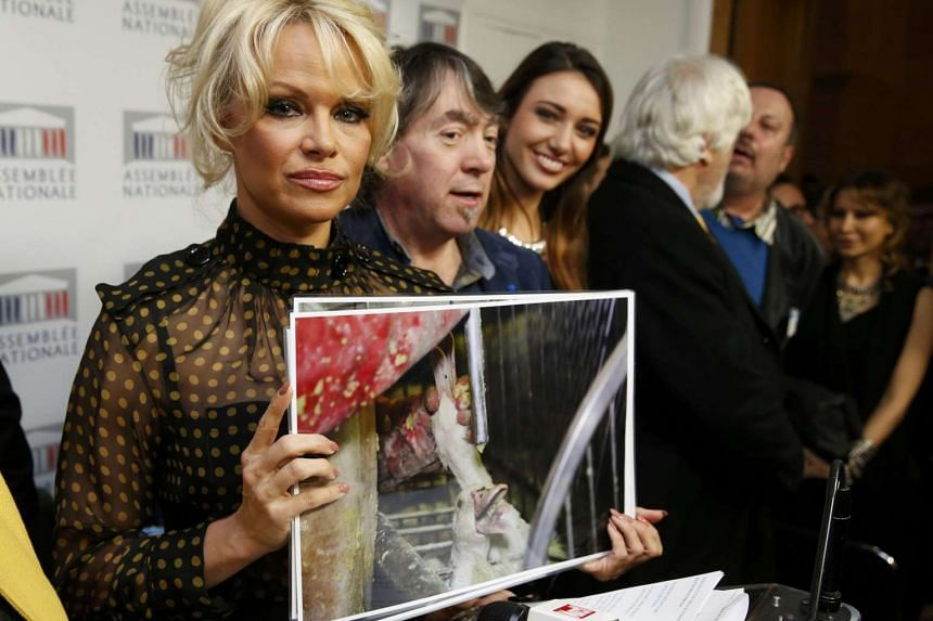 Pamela Anderson (left) and other activists protest the force-feeding of geese in Paris, France, on Jan 19, 2016.
