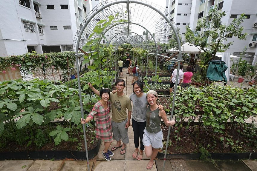 Among other things, Foodscape Collective organises visits to various community gardens across the island and has booths at farmers' markets.