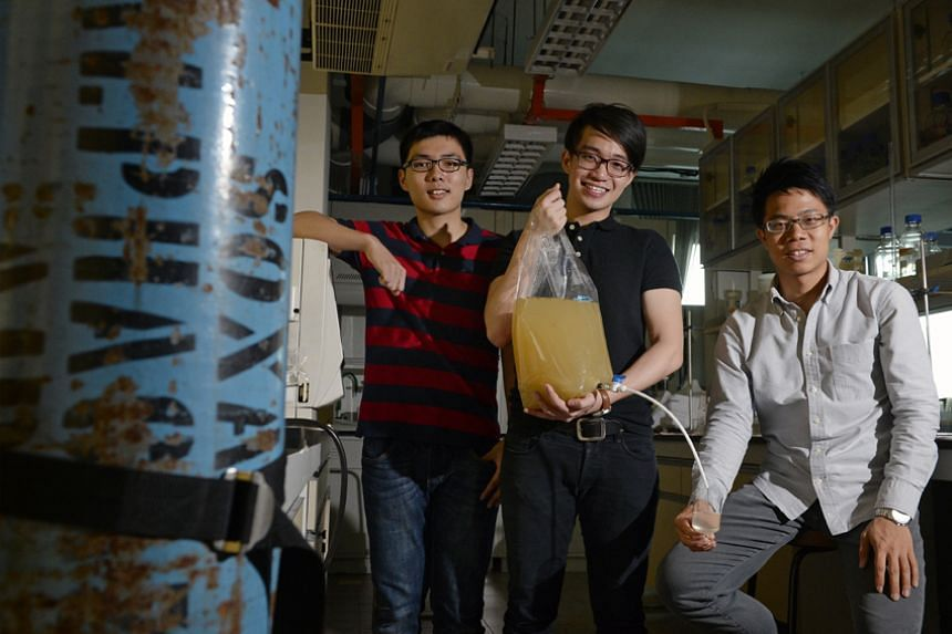 WateROAM team (from left) Vincent Loka, 22, Mr Lim Chong Tee, 24, and Mr David Pong, 26, with their invention the Fieldtrate Lite.