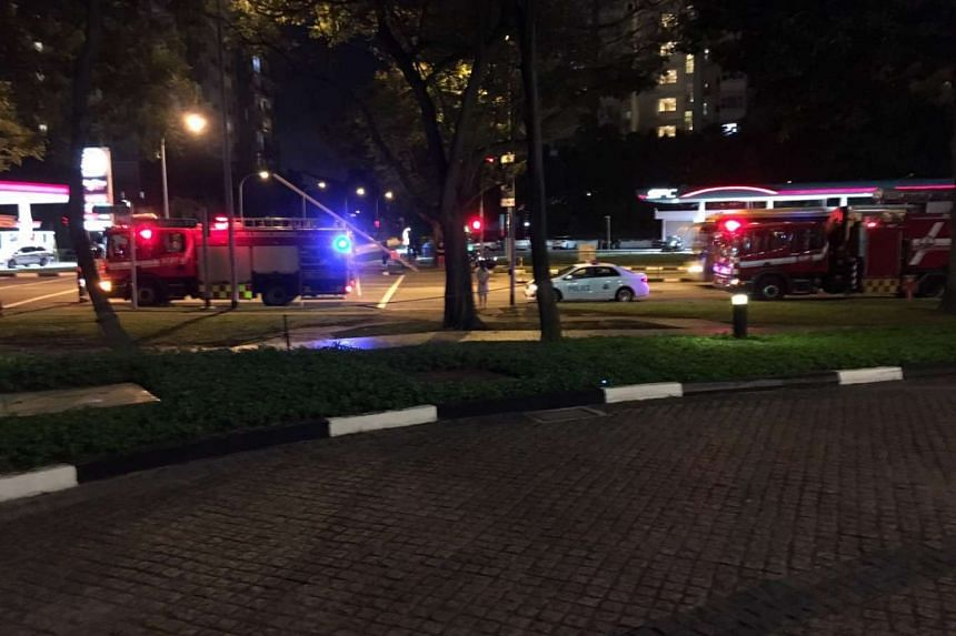 SPF and SCDF vehicles at the site of the accident on Jan 24, 2016.