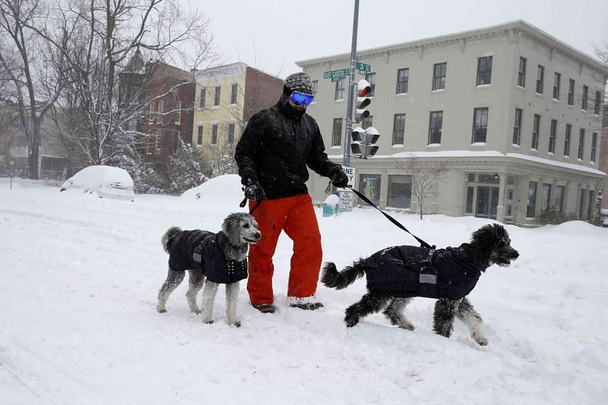 A residents walks dogs as snow continues to fall in Washington.