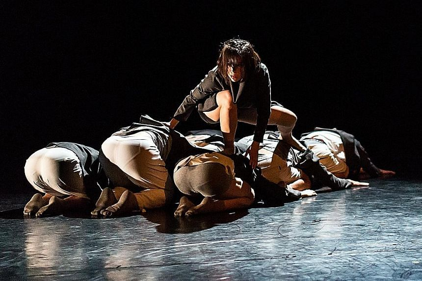Young powerful bodies in an unceasing onslaught of rapid and intense movement in Dialogue 2.0.
