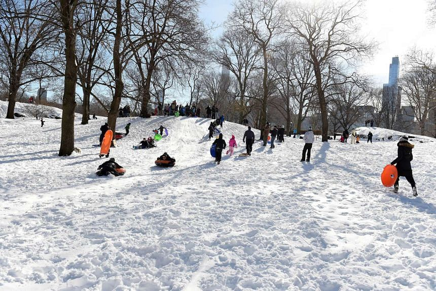 People slide down the hill in Central Park in New York, City on a sunny Sunday morning following Saturday's blizzard.