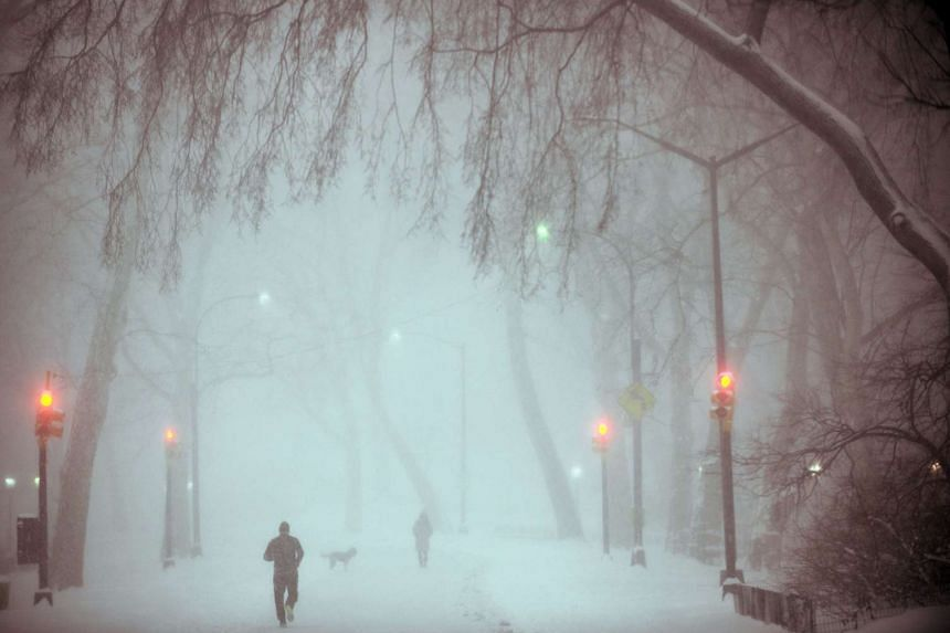 A heavy snow fall and wind gusts transformed New York City's Central Park into a winter wonderland on Saturday night.