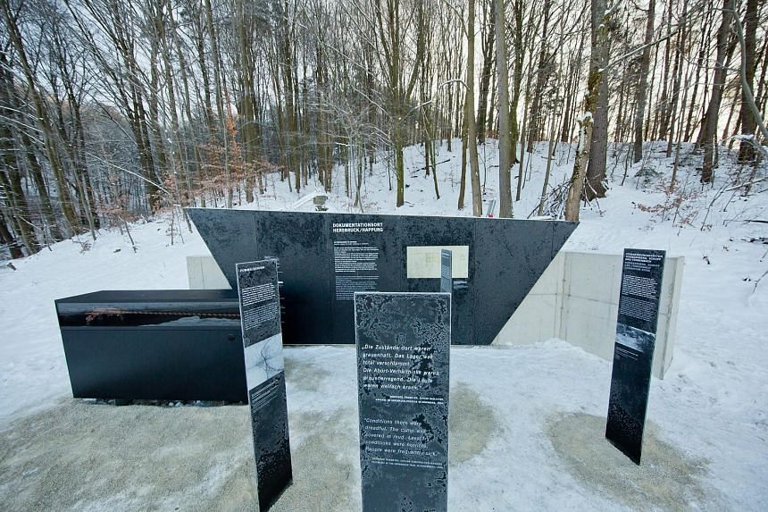 A Holocaust memorial on the site of a former concentration camp in Hersbruck, Germany. Israeli Ambassador Yael Rubinstein says that on International Holocaust Remembrance Day, the victims of subsequent genocides in Cambodia, Rwanda, Bosnia and Darfur