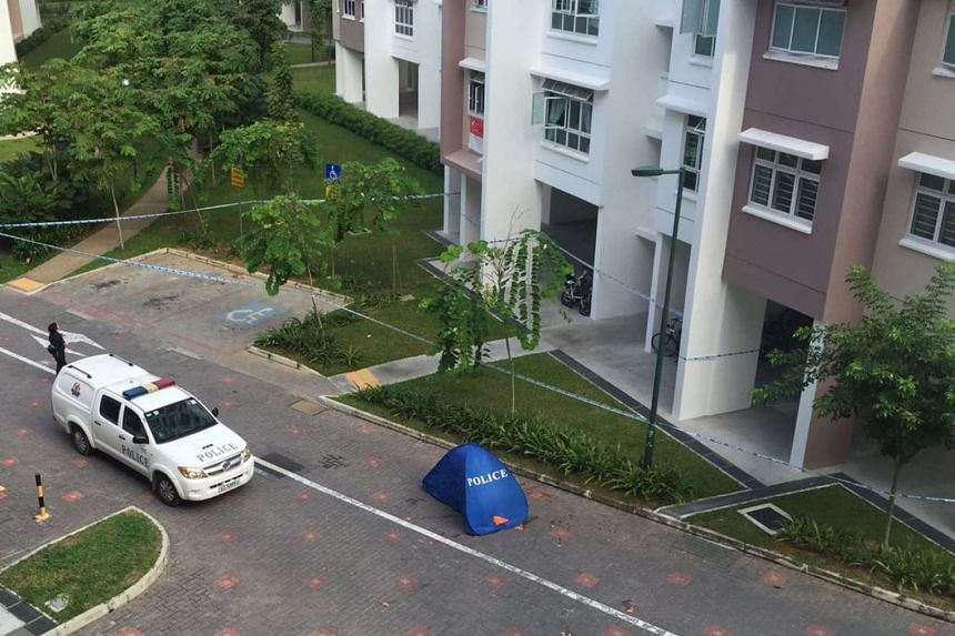 The boy, a secondary school student, lived on the 14th floor of Block 316A Yishun Avenue 9.