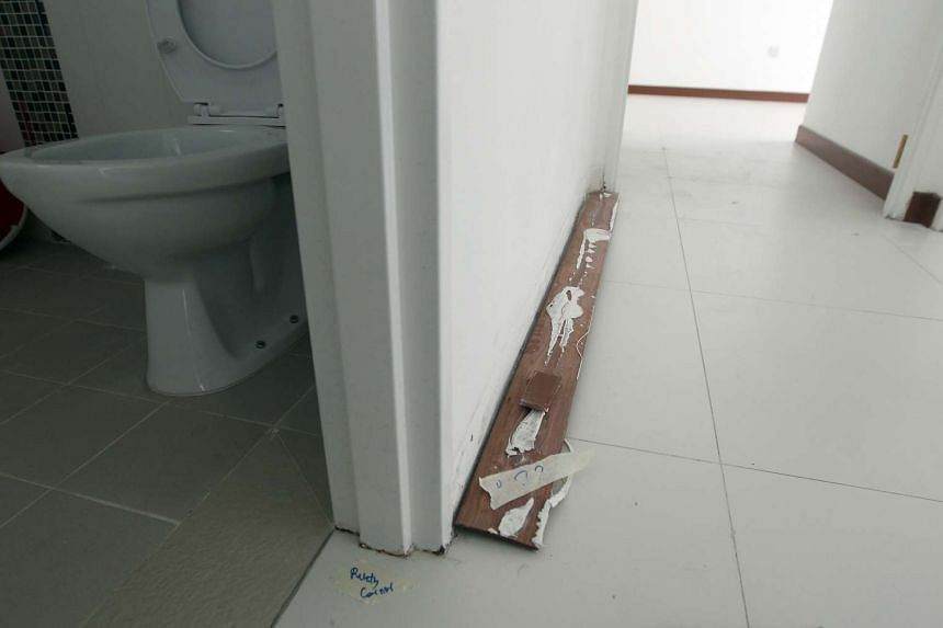 The wall skirting which fell off at the Tampines GreenLeaf BTO.