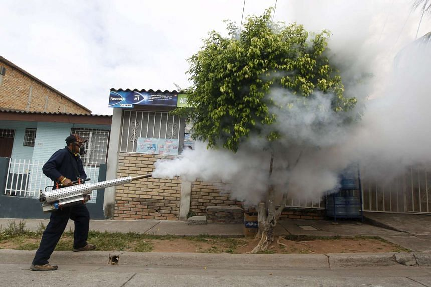 A municipal health worker carries out fumigation on a street as part of the city's efforts to prevent the spread of the Zika virus vector, the Aedes aegypti mosquito, in Tegucigalpa, Honduras on Jan 30, 2016.