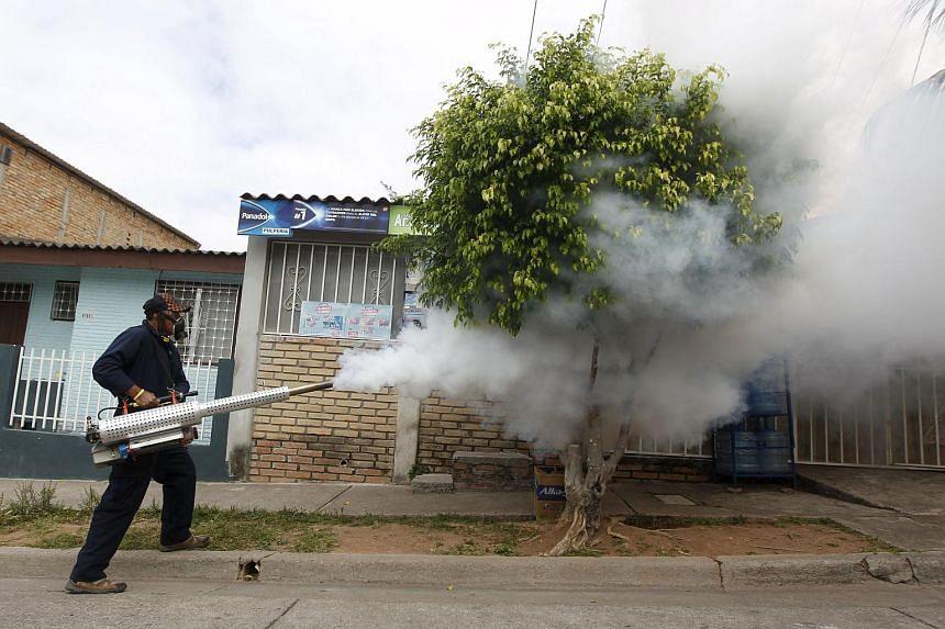 A municipal health worker carries out fumigation on a street in Tegucigalpa, Honduras, on Jan 30, 2016.