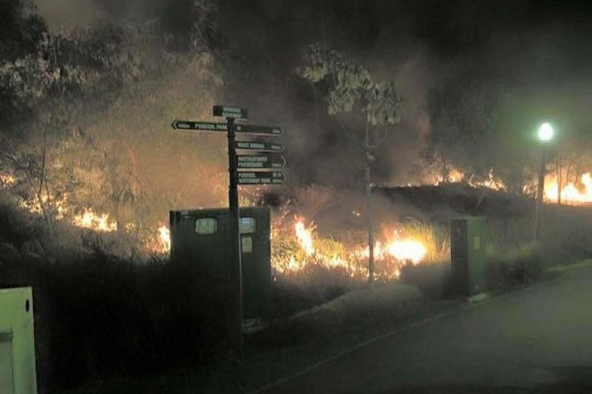 The fire spread across an area the size of two basketball courts, according to SCDF.