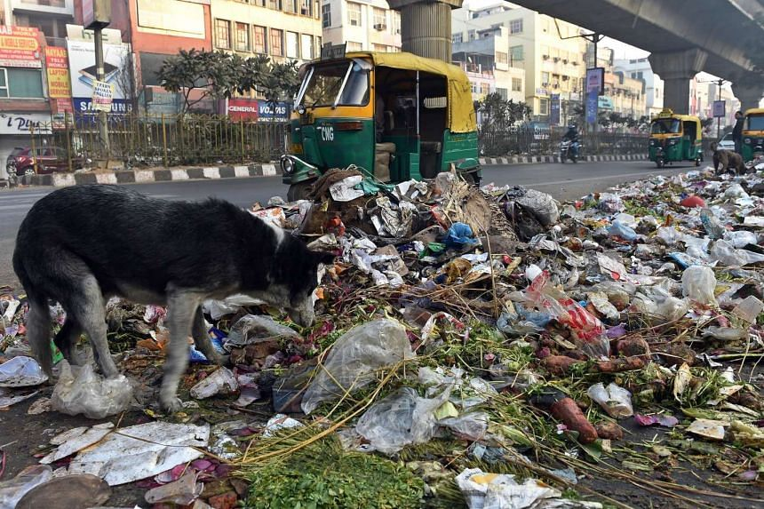 Traffic passes by a pile of garbage following a strike by municipal workers in New Delhi on Feb 1, 2016.