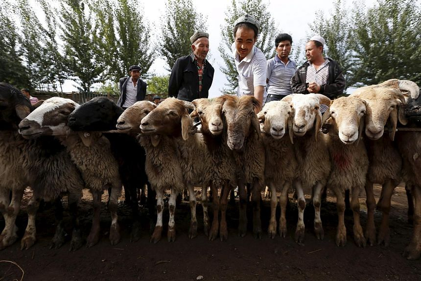 Ethnic Uighur customers select goats at a fair on a street in the Xinjiang Uighur Autonomous Region.