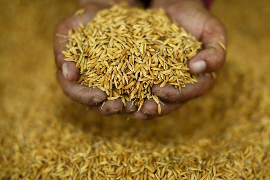 Thailand to sell $172m of rice to Iran after sanctions