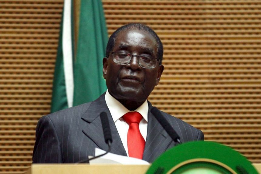 A Zimbabwean opposition supporter has asked for investigations into President Robert Mugabe's mental and physical fitness to do his job.
