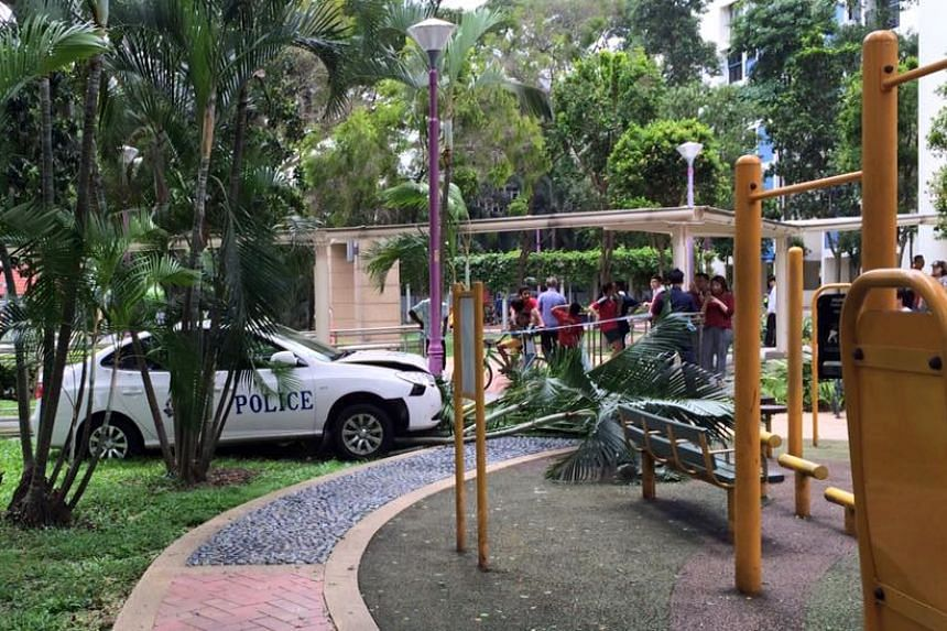 The police car crashed near a fitness corner and park but no one was hurt.