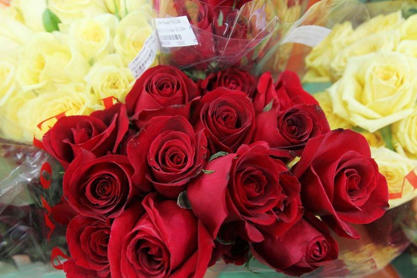Red roses for Valentine's day.