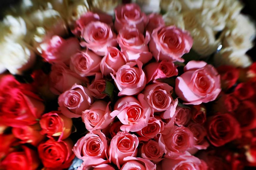 The Cambodian government has warned students against losing their dignity on Valentine's Day.