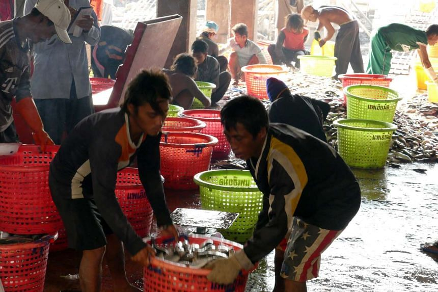 Migrant workers sorting fish at Mahachai seafood market, south of Bangkok. Foreign workers in Thailand's seafood industry are mostly from Myanmar and Cambodia and many do not have work permits.