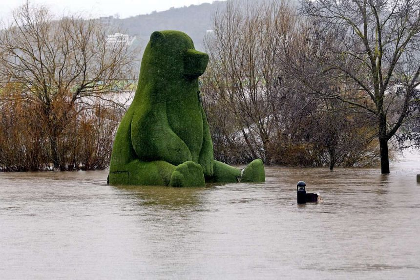 The familiar figure of the giant bear statue, covered with artificial grass, is isolated by flood water in Green Parkt in Coimbra, centre of Portugal, after the continual rainfall after the Mondego river broke its banks on Feb 13, 2016.