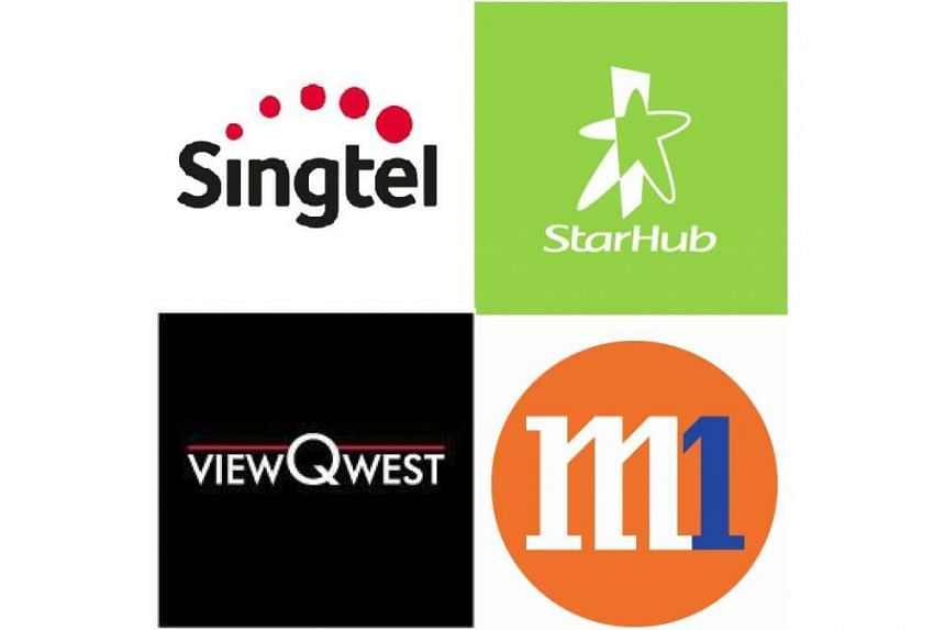 Fibre broadband services for Singtel, M1, StarHub and ViewQwest were disrupted on Wednesday evening (Feb 17).