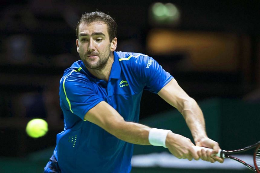 Cilic, seen here in a file photo, beat local favourite Benoit Paire 6-2 6-7(3) 6-3.