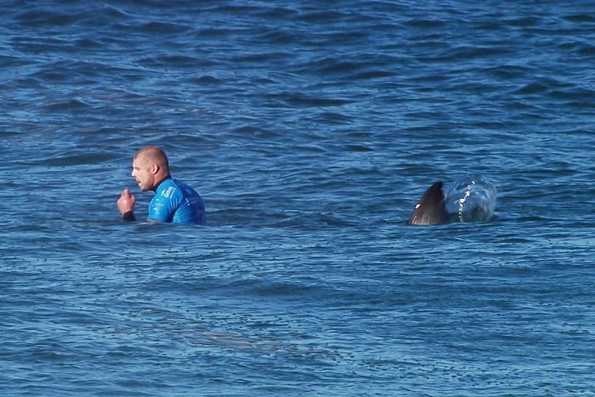 This handout screengrab file image made and released on July 19, 2015 by the World Surf League shows Australian surfer Mick Fanning shortly before being attacked by a shark during the Final of the JBay surf Open in Jeffreys Bay, South Africa.