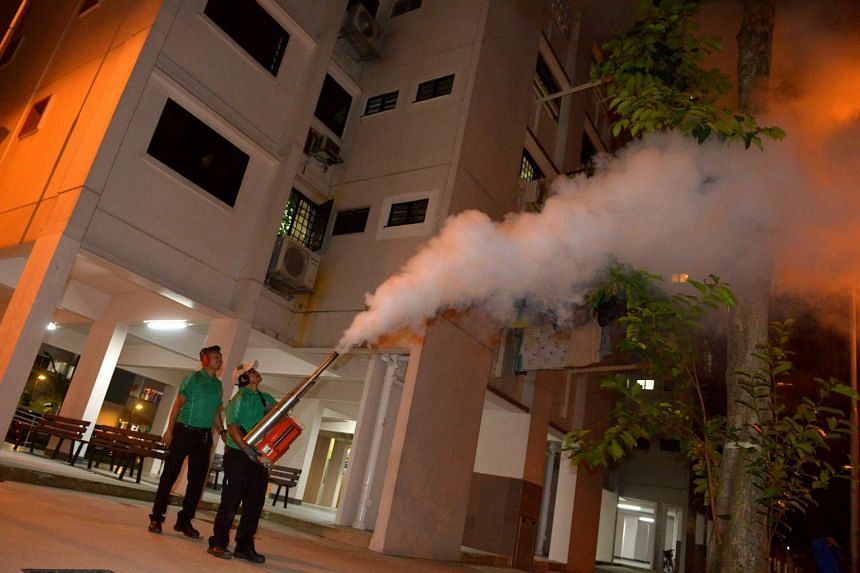 Pest management workers fogging a tree, as part of AVA's trial to control the mynah population with a chemical.