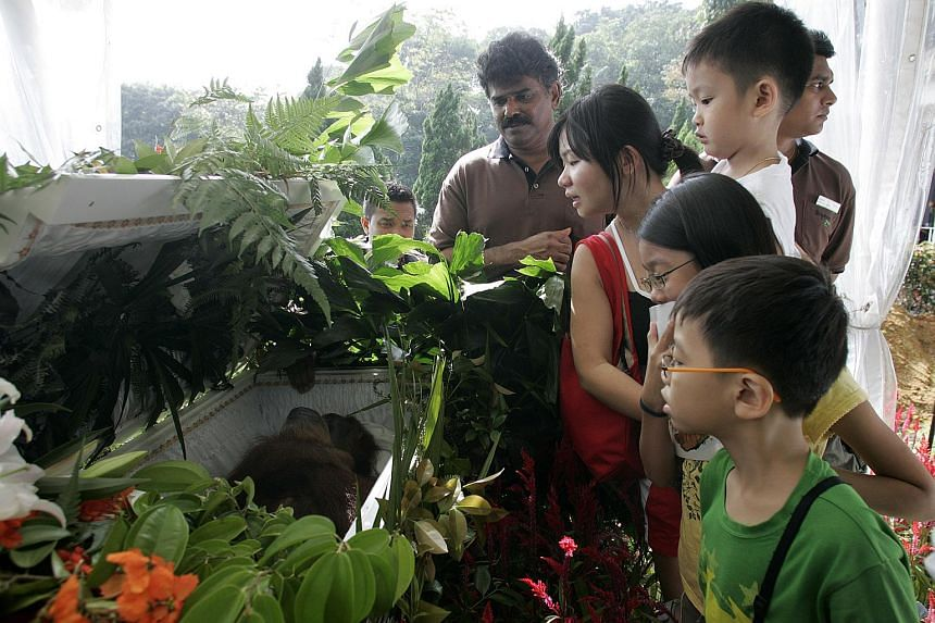Ah Meng's keeper, Sam Chellaiyah (centre), stood by Ah Meng's casket throughout her 2 hours long memorial service, answering children's queries and shaking the hands of visitors who dropped by the zoo for one last look at Ah Meng.