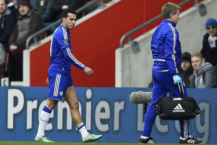 Pedro (left) leaving the pitch with a hamstring injury on Saturday. Chelsea interim manager Guus Hiddink believes such injuries to his players are caused by a fixture overload.