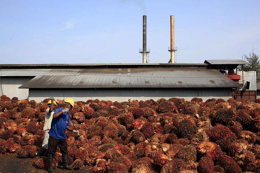A palm oil factory outside Kuala Lumpur. Higher biodiesel consumption in Indonesia will benefit Wilmar's tropical oils division.