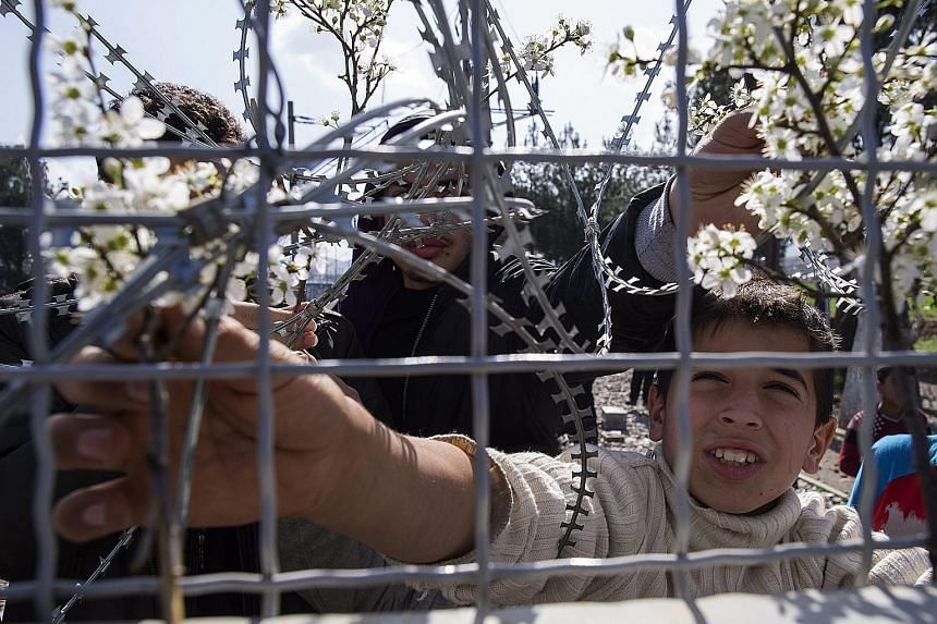 A refugee placing a flower on the fence as he waits with others on the Greek side of the border to enter Macedonia.