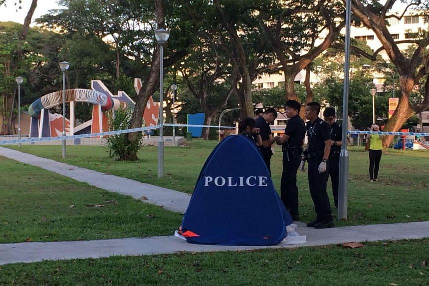 Police put up a blue tent at the location where a man was found kneeling face down near the iconic dragon playground on March 3, 2016.
