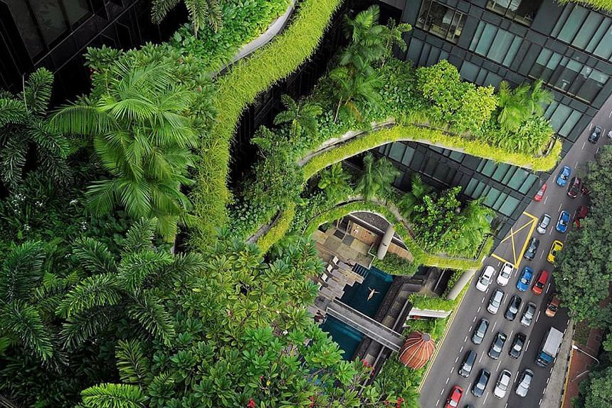 Go behind the scenes on how the Parkroyal on Pickering hotel's greenscape (above) came about with design practice Tierra Design. Installation works (above) at Urban Ventures.