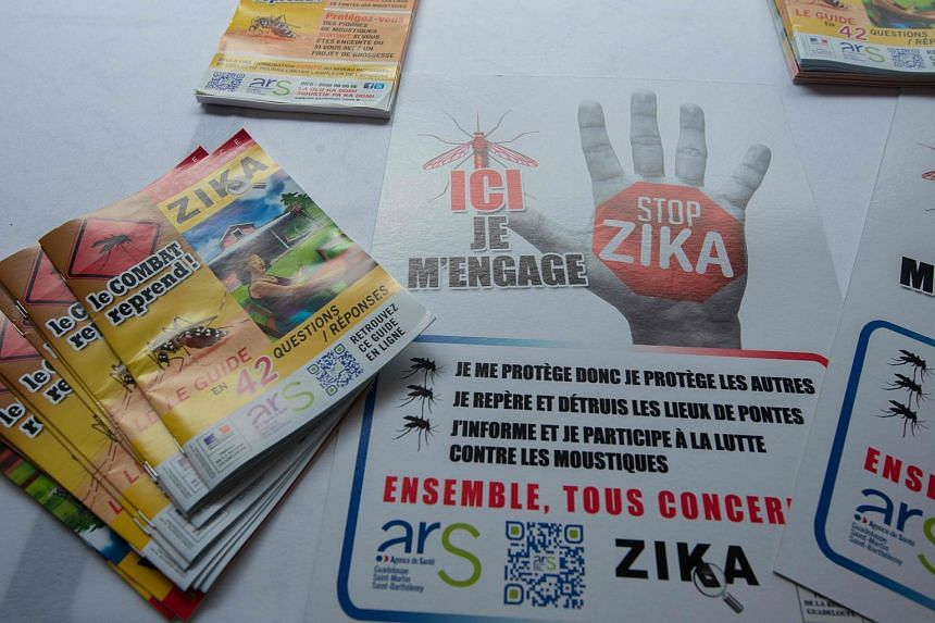"Flyers and posters of a ""Stop Zika"" campaign are seen in Petit-Bourg, Guadeloupe, on March 4, 2016."