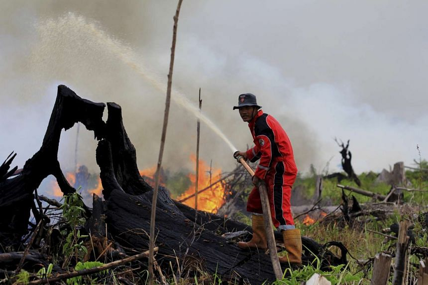 A firefighter tries to put out a fire on land intended for a palm oil plantation in Riau province, Sumatra, Indonesia, on March 5, 2016.