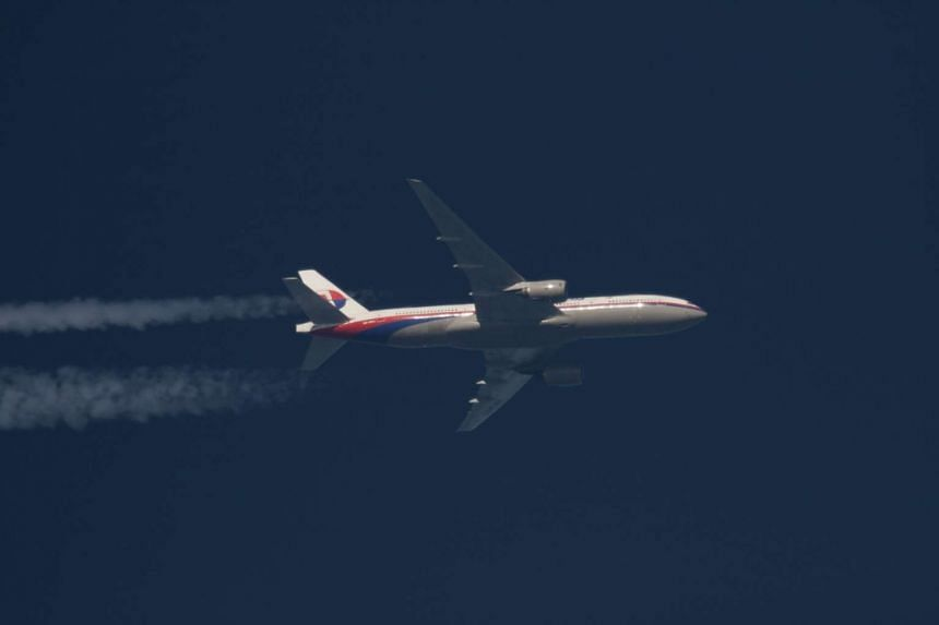 A Malaysia Airlines plane flying over Poland on Feb 5, 2014.