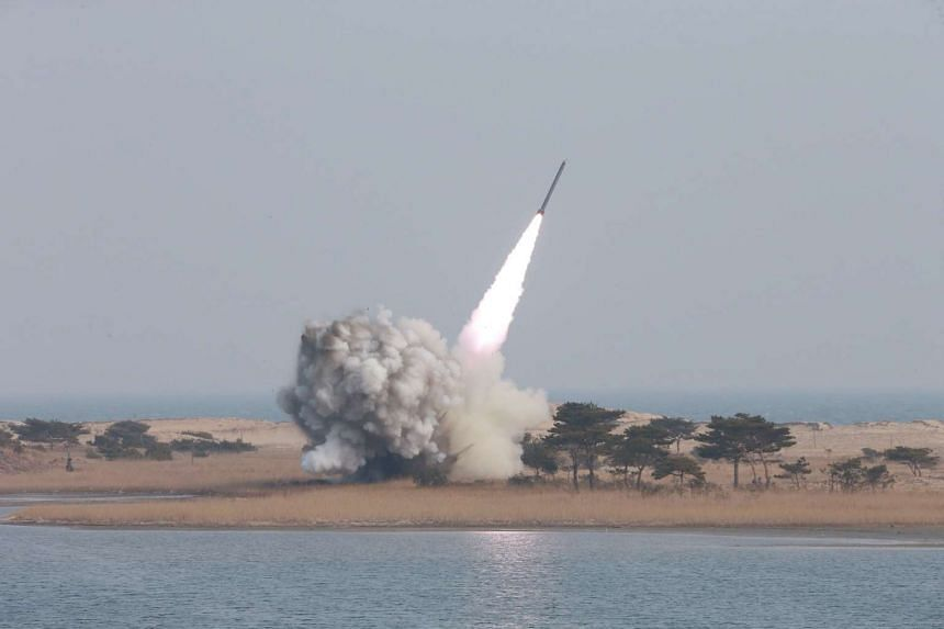 North Korea's new multiple launch rocket system being test fired, in an undated handout picture from North Korea's Korean Central News Agency.