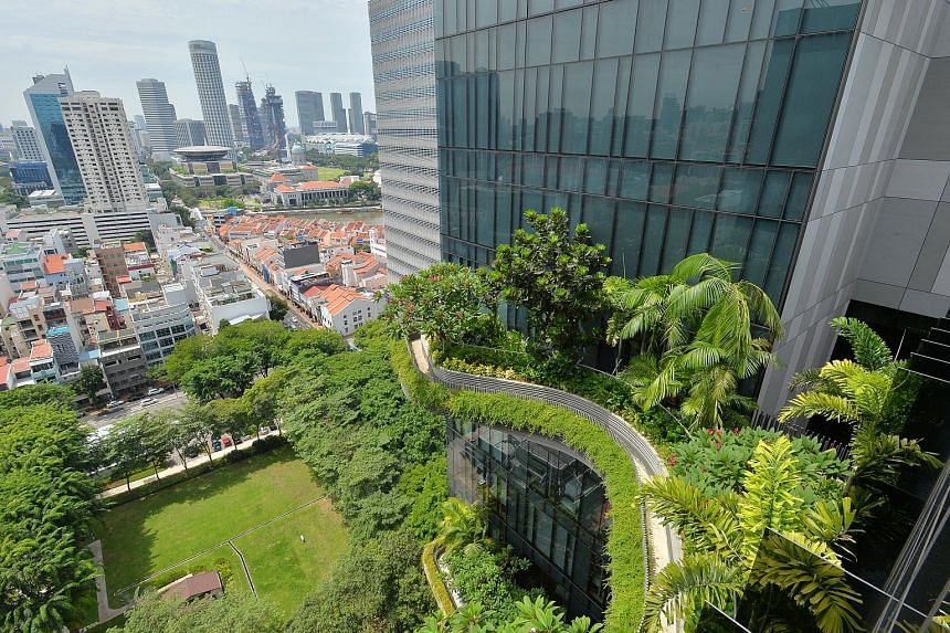 Eco-friendly buildings here include Parkroyal on Pickering, with its vertical garden, which helps save costs by cooling surface temperatures.