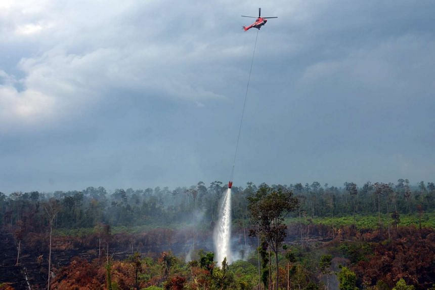 Indonesia is expecting drier weather in several fire and haze-prone regions in March and April.